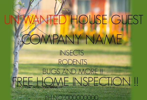 Pest Control Home Inspection