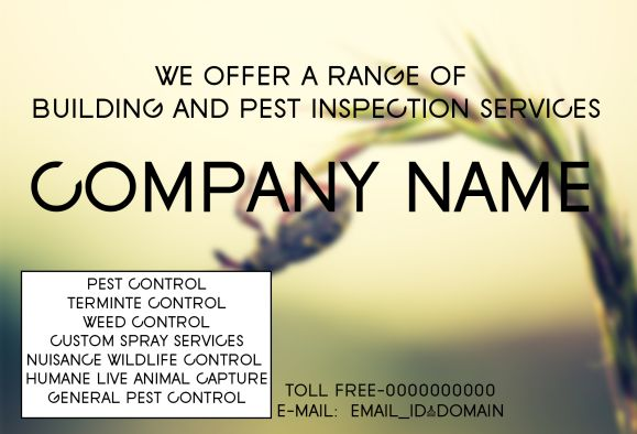 Pest Inspection Services