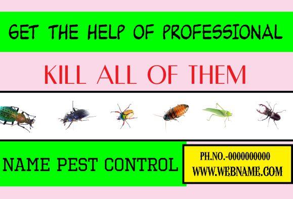 Professional Pests Killing