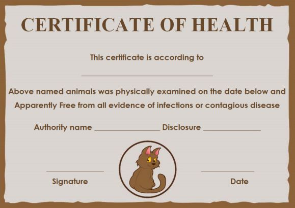 Cat Health Certificates