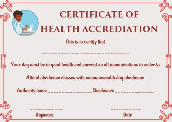 Dog Health Certificate for Travel Templates